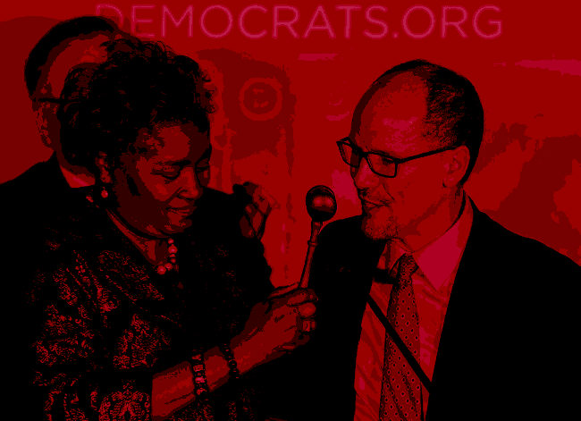 Can or Should The Democratic Party Be Reformed?
